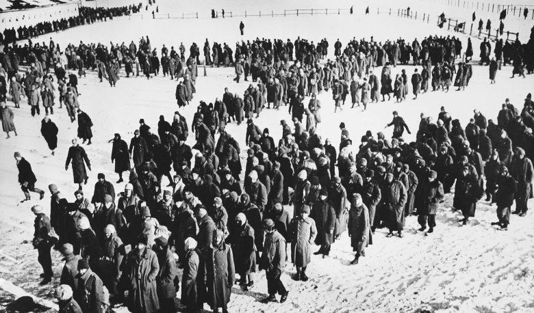 Немецкие, итальянские и румынские военнопленные в Сталинграде. 1943 г.