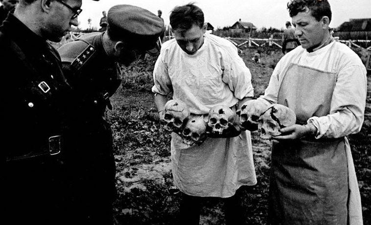 Представители Чрезвычайной Государственной комиссии осматривают черепа жертв фашистского террора в Орле. Сентябрь 1943 г.