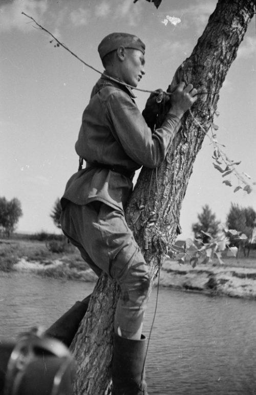 Связисты прокладывают кабель через реку южнее Воронежа. 1942 г.