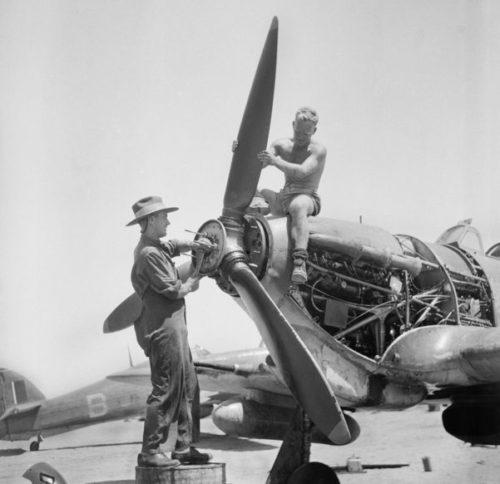Австралийские войска в Египте. 1943 г.