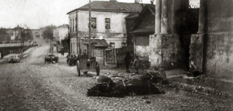 Убитая лошадь и брошенное советское орудие при отступлении красноармейцев. 12 октября 1941 г.