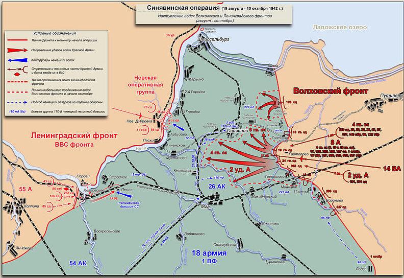 Карта-схема боевых действий Волховского и Ленинградского фронтов 19 августа – 10 октября 1942 года.