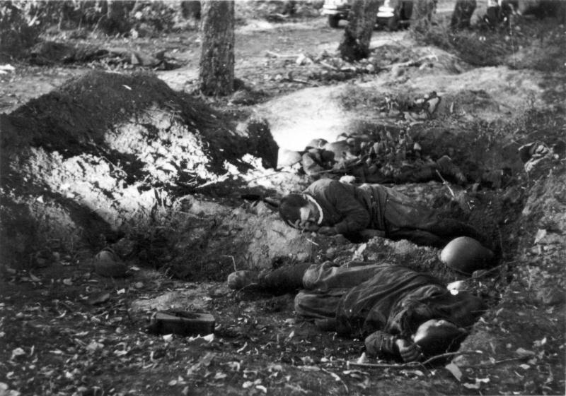 Красноармейцы, погибшие в бою в районе Гомеля. Август 1941 г.