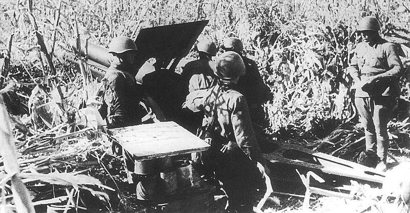 Артиллерийский расчёт под Одессой.