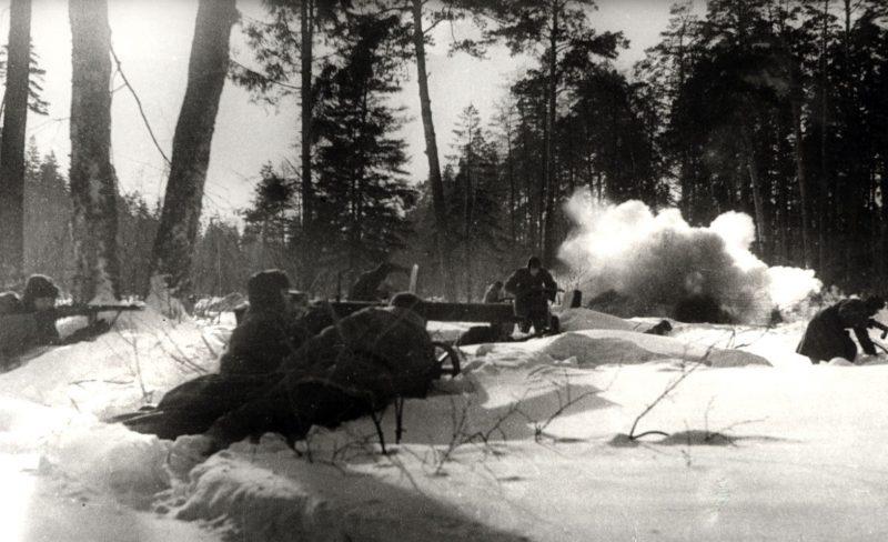 Бой в лесу. 1941 г.