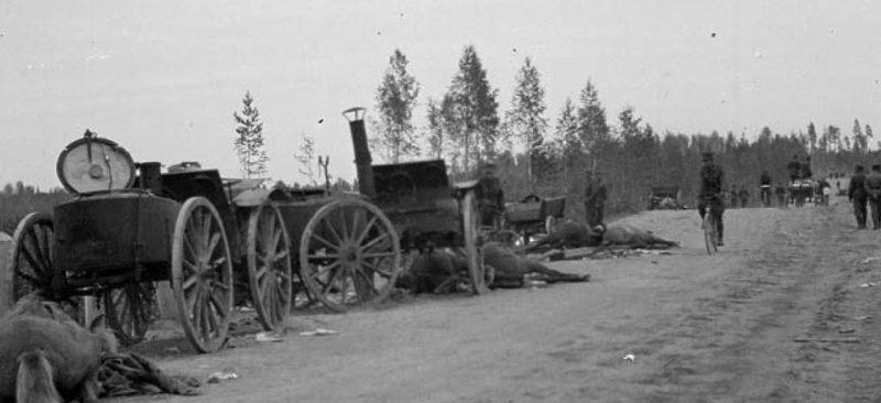 Разбитый советский обоз в пригороде. 1 октября 1941 г.