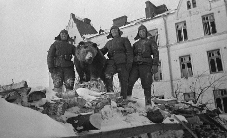 Бойцы Красной Армии на укреплениях в Выборге. Март 1940 г.