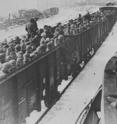 Пленные красноармейцы в открытых вагонах в районе Брянска. Ноябрь 1941 г.