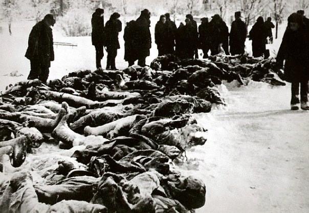 Горожане у тел, расстрелянных земляков и военнопленных 30 декабря 1941 г.