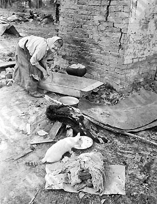 Ельня после освобождения. Сентябрь 1943 г.
