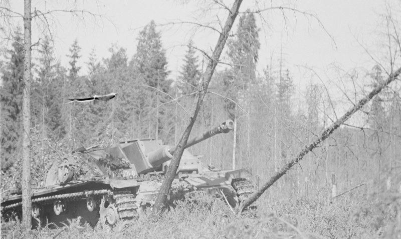 Финское штурмовое орудие в лесу в районе Выборга. Июнь 1944 г.
