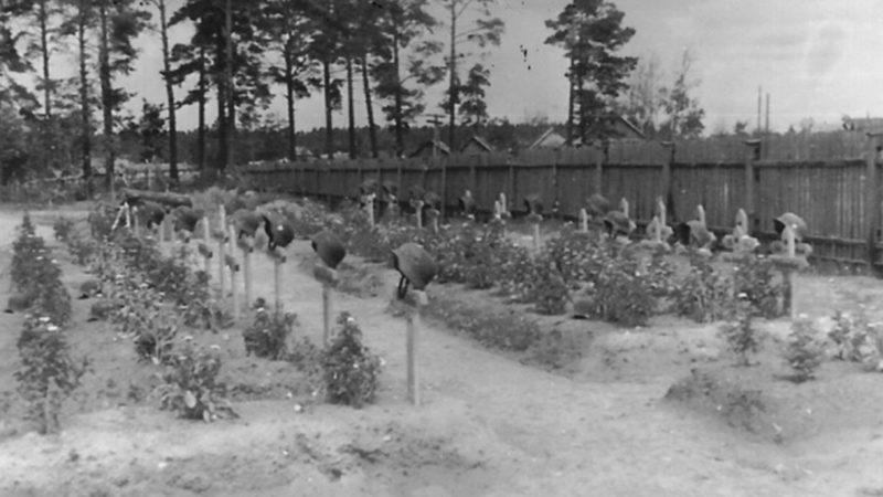 Немецкое кладбище. 1944 г.