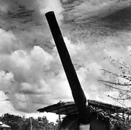 Одно из 15-дюймовых орудий береговой обороны Сингапура.