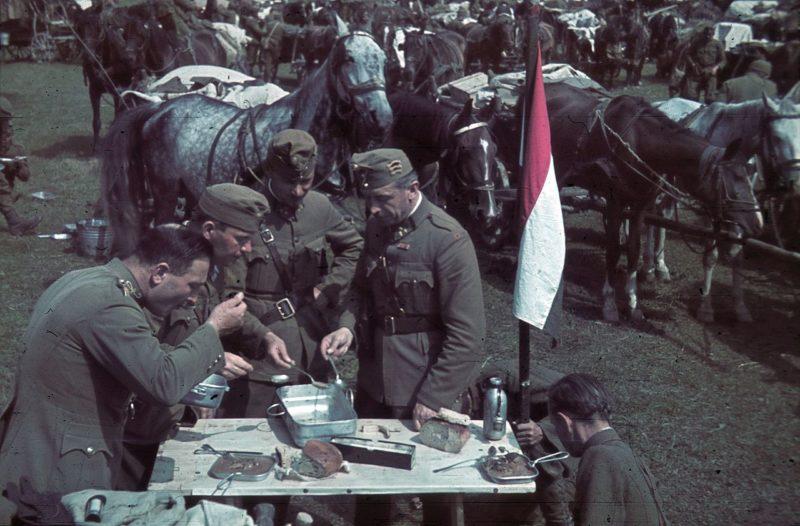 Румынская кавалерия в Северной Трансильвании. 1941 г.