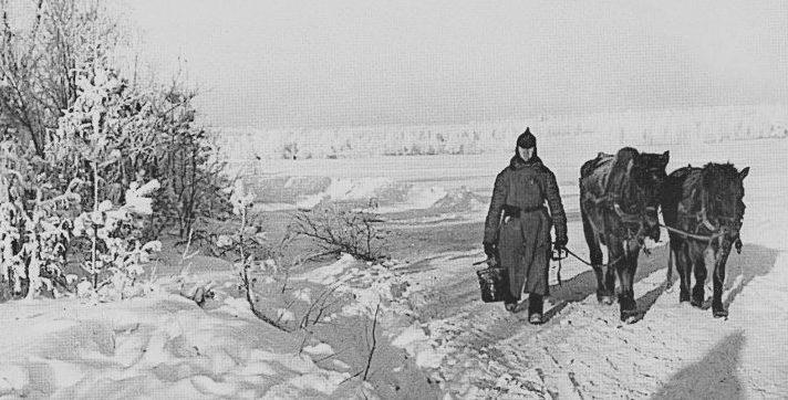 Красноармеец ведет лошадей с водопоя на Карельском перешейке. Январь 1940 г.