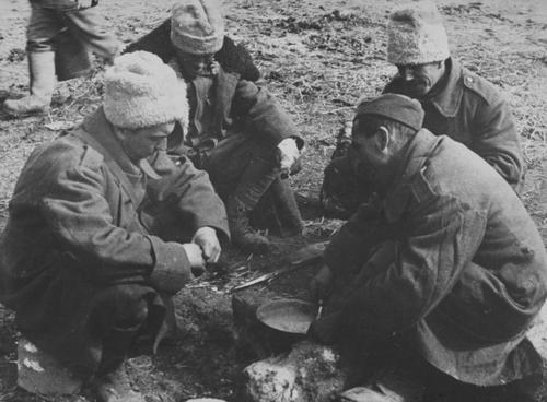Румынские солдаты за приготовлением обеда. Кубань, 1942 г.