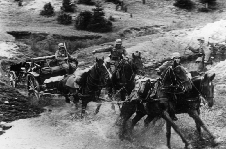 Четырехконная упряжка тянет пехотное орудие. Польша, сентябрь 1939 г.