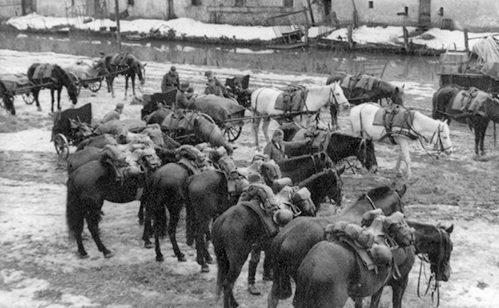 Лошади артиллерийского подразделения.