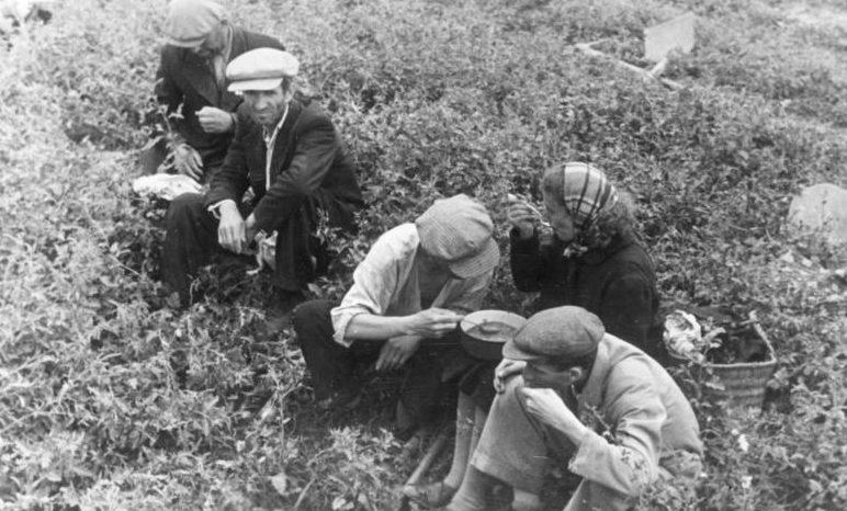 Евреи, во время обеда, используемые на дорожных работ в Кишиневе. Август 1941 г.
