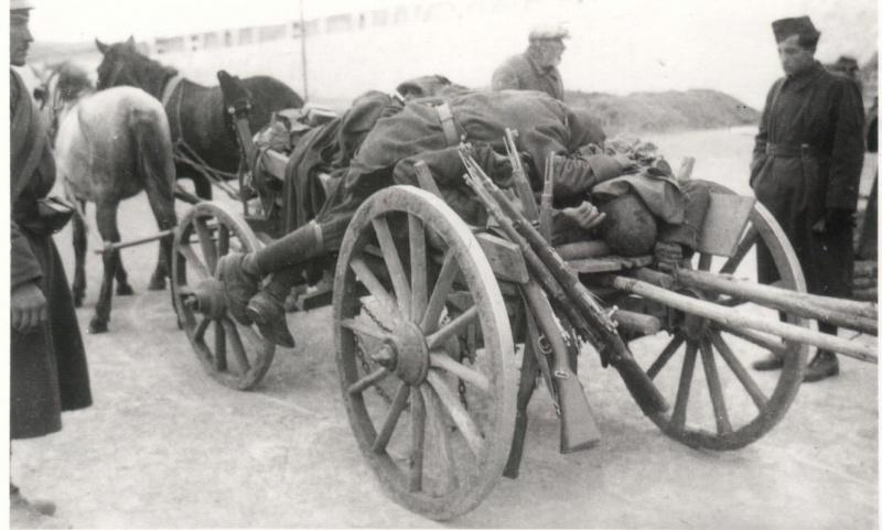Тела убитых румынских солдат у села Выгода Одесской области. Сентябрь 1941 г.