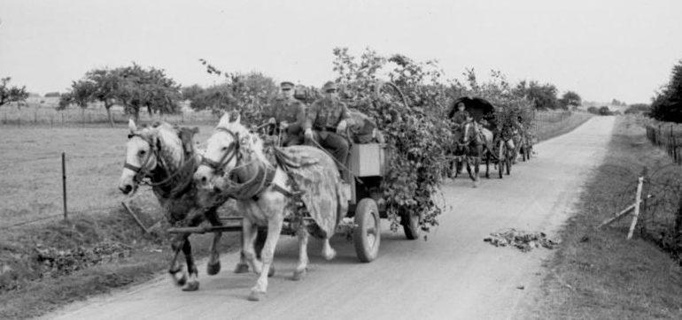 Немецкие пароконные повозки во Франции. Май 1940 г.