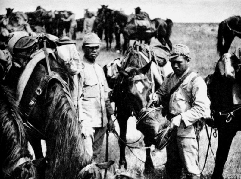 Японские кавалеристы кормят лошадей во время боев на реке Халхин-Гол. 1939 г.