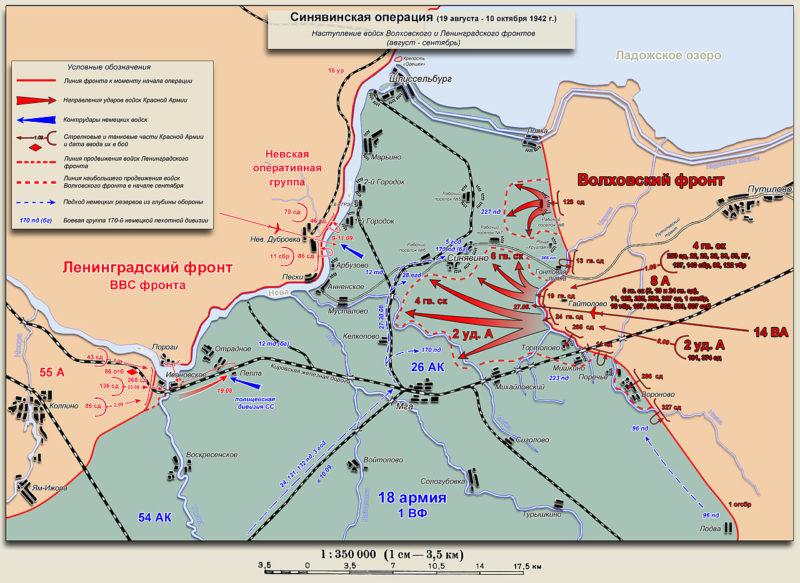 План-схема Синявинской наступательной операции.