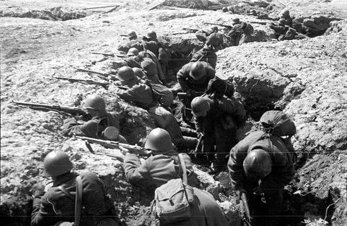 254-я стрелковая дивизия 11-ой армии на позициях под Старой Руссой.