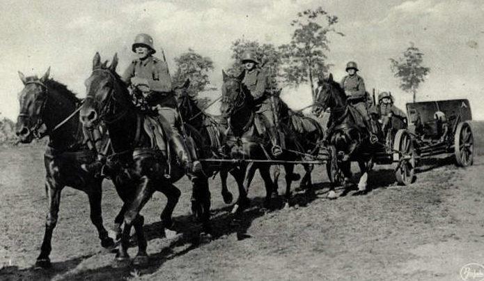 Конная артиллерия на Восточном фронте.