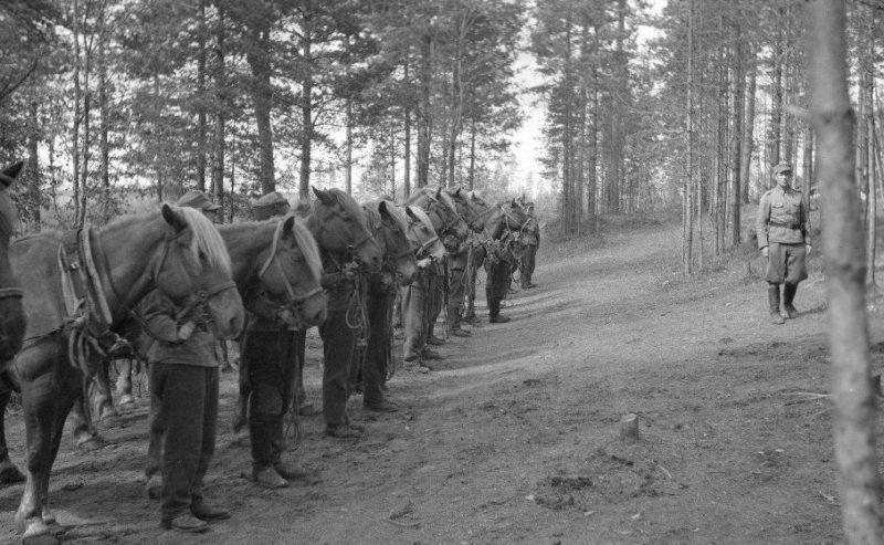 Финские кавалеристы 1940 г.