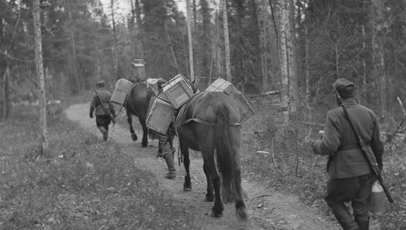 Конные вьючные обозы.