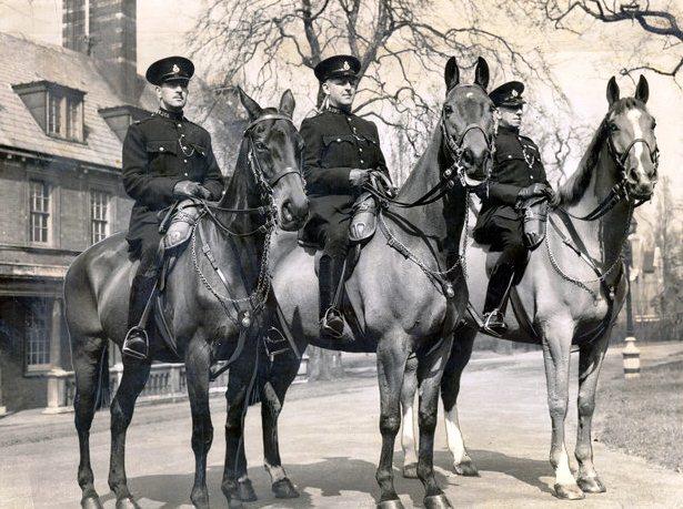 Лошади награжденные медалью Марии Дикин.