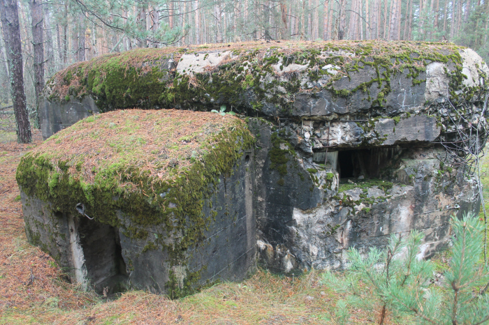 Огневые точки №405 и №406 ротного района «Староселье».