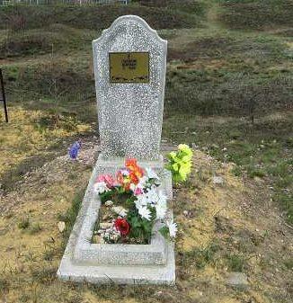 c. Старые Савины Черемисиновского р-на. Памятник, установленный на братской могиле, в которой похоронено 22 советских воина 121 стрелковой дивизии погибших в 1943 году при освобождении села.