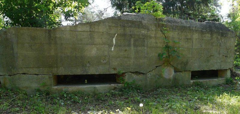 Артиллерийско-наблюдательный пункт, двухэтажный ДОТ №412 на 3 амбразуры, входивший в БРО №3.