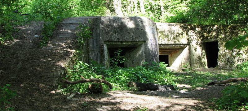 План и общий вид артиллерийского полукапонира №554 в селе Гута-Межигорская.