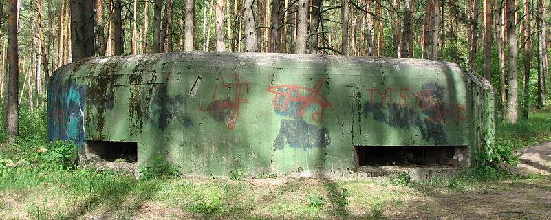 Пулеметный ДОТ №555 в селе Гута-Межигорская.