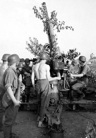 Расчет 80-мм зенитного орудия у Старого Оскола. 1943 г.