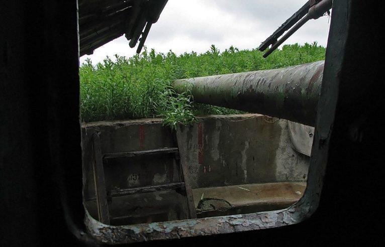 Орудие батареи «Поночевного» 113-го артдивизиона на полуострове Средний.