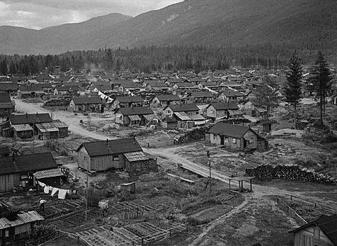 Лагеря интернированных японцев.