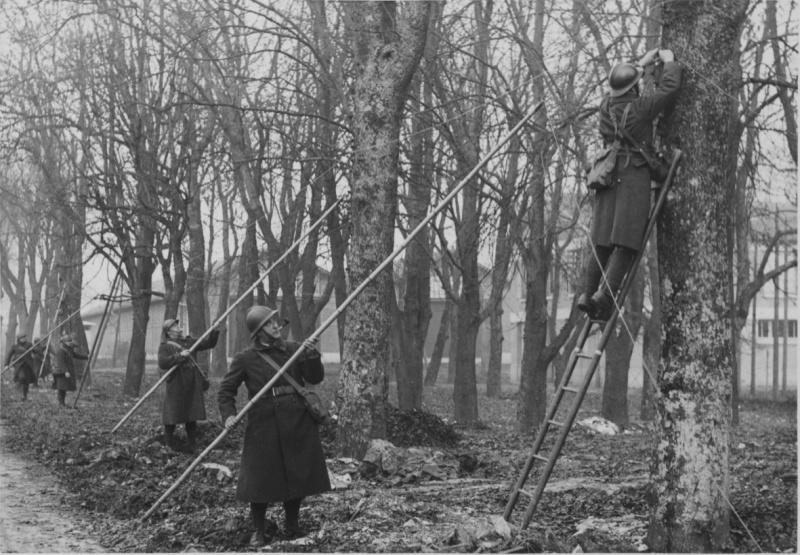 Французские солдаты прокладывают линию связи по деревьям на Западном фронте. Ноябрь 1939 г.