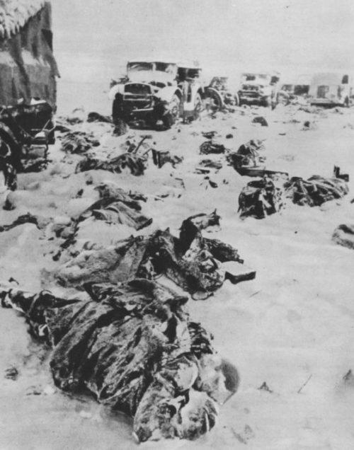 Тела итальянских солдат у разбитой колонны под Сталинградом. Февраль 1943 г.