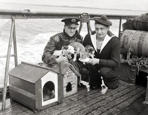 «Талисманы» на борту французского военно-морского учебного и гидрографического корабля «Président Theodore Tissier». Март 1940 г.