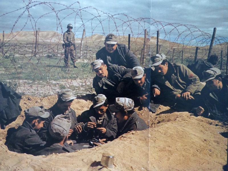 Итальянские пленные играют в карты в лагере в Тунисе. 1943 г.