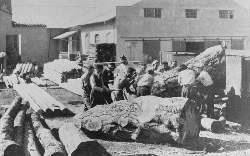 Итальянские евреи на принудительных работах в лагере в Горици. 1943 г.