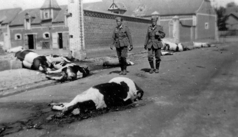 Жертвы боя во французской деревне Сен-Симон. Июнь 1940 г.