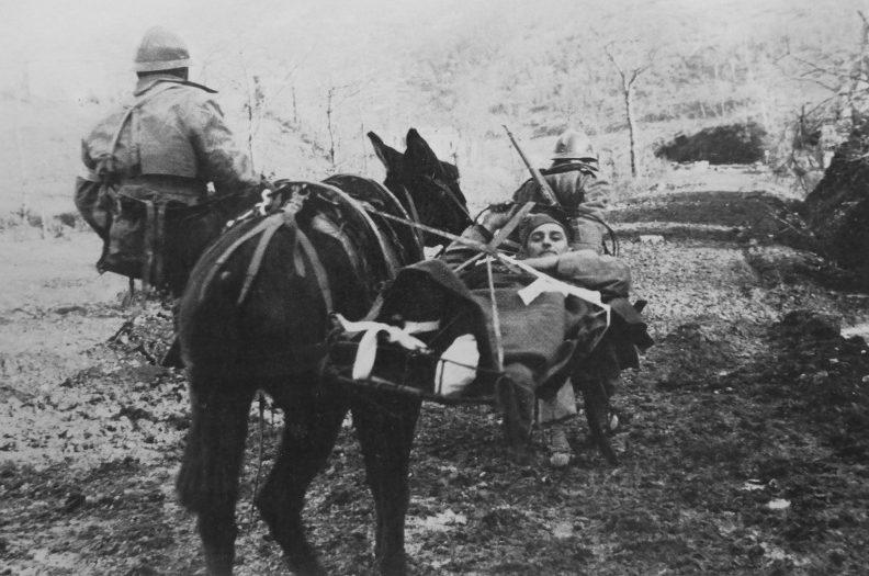 Солдаты французского экспедиционного корпуса эвакуируют на муле раненого под Монте-Кассино. 2 февраля 1944 г.
