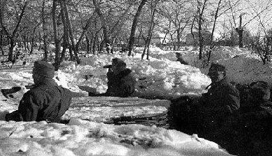 Окопы на берегу Дона. Ноябрь 1942 г.