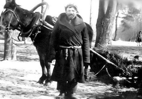 Русский крестьянин на перевозке грузов для Венгерской армии. Декабрь 1942 г.