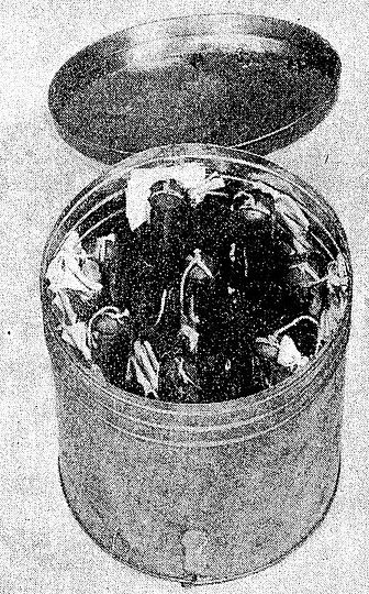 Устройство «пиво» – бутылки с фосфором в таре.